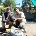 Estudiantes universitarios participan en la excavación del Pozo del Peristilo
