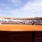La Feria del Toro en Olivenza. Comienzos de Marzo. Fiesta de Interés Turístico Regional