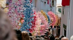Fiesta de la Santa Cruz de Feria (1)