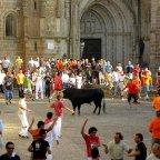 Fiesta de los Toros de San Juan (Coria). Fiesta de Interés Turístico Regional (del 23 al 29 de Junio)