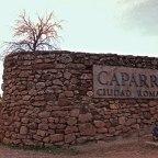 Caparra. Ciudad y Puente (Guijo de Granadilla-Oliva de Plasencia)