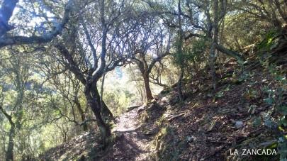 Cerro Gimio 1