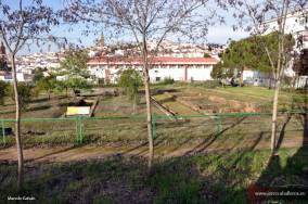 Villa romana pomar 4