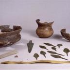 """El Concepto de """"Droga"""" en la Prehistoria Europea"""