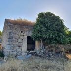 Molino de la Charca del Lancho (Arroyo de la Luz)