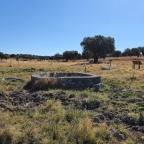 Pozo de Las Matanzas (Arroyo de la Luz)
